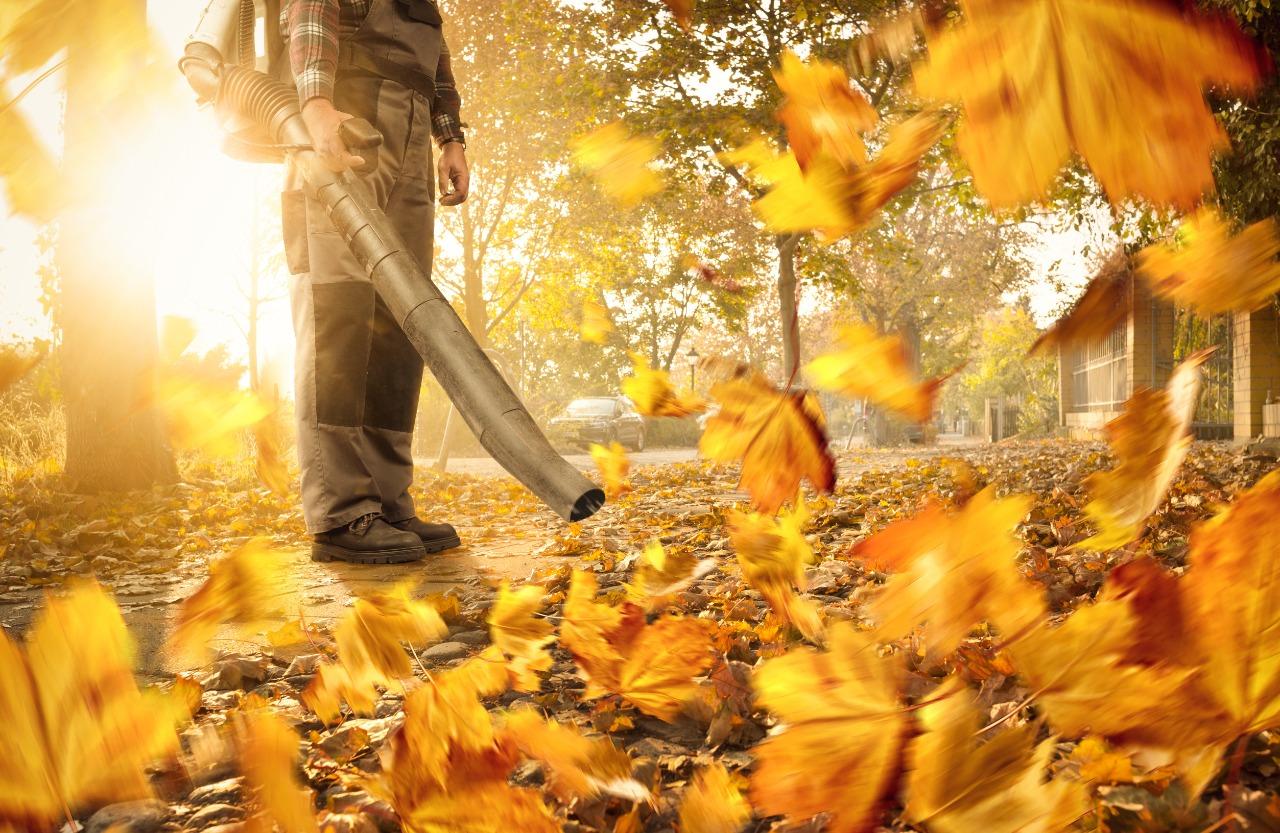 Use o soprador de folhas com segurança